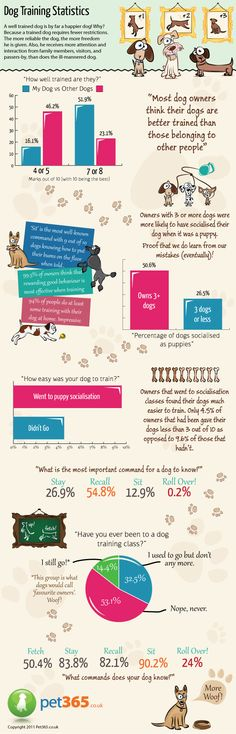 This dog training infographic shows just how important it is to socialise a dog when it's young - something that first time owners don't always quite get around to. Fortunately we do learn from our mistakes with the more experienced dog owners putting a focus, and seeing the rewards, on socialising man's best friend.