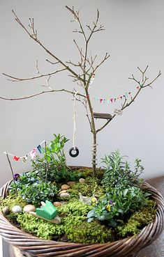 Mini garden by ninimakes, via Flickr