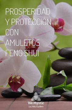 Si queremos obtener prosperidad, protección o armonizar las energías de nuestro hogar, nada mejor que utilizar los místicos talismanes y amuletos del Feng Shui.