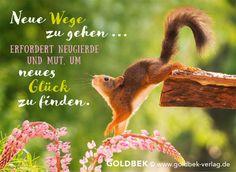 Go new ways . Learn German, True Words, Travel Quotes, Meditation, Humor, Feelings, Sayings, Animals, Life