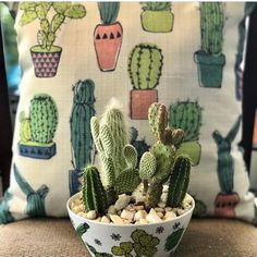 "255 Likes, 2 Comments - The Plant Mode (@theplantmode) on Instagram: ""#Repost @bitkiaskina ・・・ @plantmodestore SHOP NOW❗️➡️WWW.THEPLANTMODE.COM⬅️⠀⠀ ➖➖➖➖➖➖➖➖➖➖➖➖⠀…"""