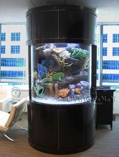 Custom Aquarium in a building