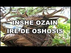 INSHE OZAIN IRE DE OSHOSI/SUERTE CON OCHOSI