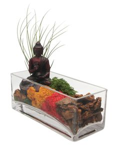 Unique and colorful terrarium with moss, air plants and Buddha statue serves as inspiration for mediation while providing your home with beautiful plant life.