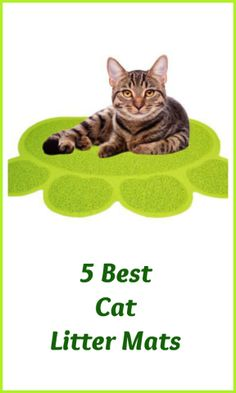 Finding cat litter on carpeting, clothing, furniture, even your bed...  is, well, disgusting. That's why every cat owner searches for the  perfect litter mat that will attract that litter off their cat's feet  like a magnet the second he leaves his litter box. Is there a perfect  litter mat?  Here are five that come pretty close, according to the cat  owners who have tried them.