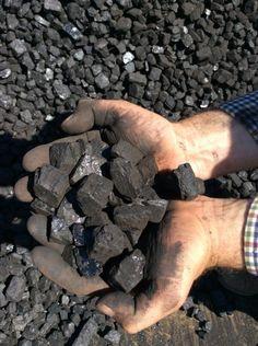 House Coal Singles