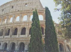 Coliseum, Rome #nsptravels Travel Pictures, Notre Dame, Barcelona Cathedral, Rome, Around The Worlds, Photo And Video, Instagram, Travel Photos, Rome Italy