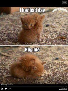 I had bad day... hug me tight, til we sleep.