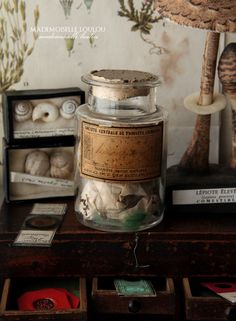 Curiosities from Mademoiselle Loulou