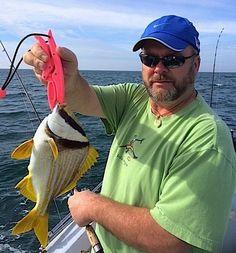 Porkfish, 1-14-15, Naples Fishing Report & Charters ~ #Naples.