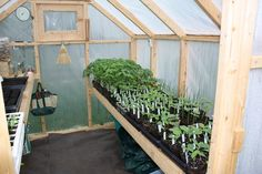 I grew up living next to my grandparents and spent many days working side by side, starting seeds and transplanting plants, with ...