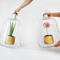 Polské studio Lightovo navrhlo lampu, která má 2 funkční využití - společně se světlem totiž může poskytovat menším květinám i útočiště jako...