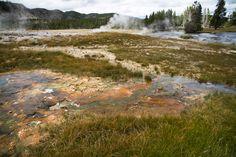 Yellowstone #yellowstone #nationalpark #grass #water #colors #magic #landscape http://hikersbay.com/go/usa