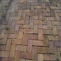 Street PaversMade to withstand centuries of heavy traffic, these vintage bricks are reclaimed from quaint old streets throughout the Midwest. Choose from America's largest selection to create your one-of-a-kind driveway, patio or walkway. After more than 100 years, these bricks are still in superb condition, with a durability and charm unmatched today. And they will not fade as modern concrete pavers do. We will be delighted to help you find the perfect size, color and texture for your…