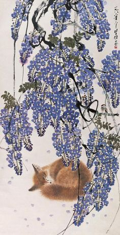 "Fox sleeping under wisteria ~ artist Fang Chuxiong; contemporary ink and color on paper, 53.15"" x 27.36"""