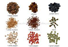 spices image:  black pepper, allspice, juniper berry, white mustard, black mustard, clove, white pepper, pink pepper, green pepper