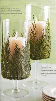 glass votives carefully decorated with sprigs of pine trees Lodge Decor, Event Decor, Accent Pieces, Floral Arrangements, Christmas Ideas, Wedding Planning, Trees, Diy Projects, Table Decorations