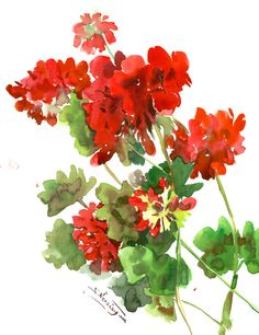 Red Floral Artwork, geranium, one of a kind red green white minimalsit floral watercolor art asian watercolor flowers, pelargonia by ORIGINALONLY on Etsy