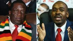 Zimbabwe election: UN body warns of voter intimidation Latest News