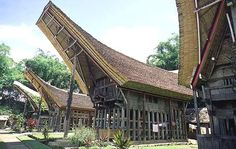 Toraja culture features an absolutely exquisit traditional architecture (the tongkonan, a building on stilts housing the extended family).