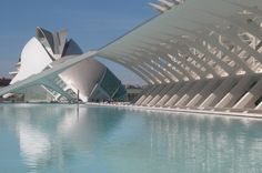 Beauty of our area: Musée des Arts & des Sciences, Valencia