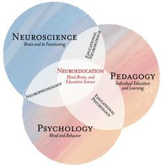 This article explains how Mind, Brain, and Education (MBE) science combines perspectives from neuroscience, psychology and pedagogy that contribute to a better Learning Psychology, Cognitive Psychology, Educational Psychology, School Psychology, Psychology Degree, Developement Personnel, Brain Based Learning, Deep Learning, Brain Science