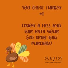 Scentsy Independent Consultant, You Choose, Love My Job, Consultant Business, House Smells, Winter Season, Party Games, Business Ideas, Turkey