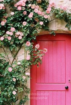 Decoration color Pink - Door with climbing flower in lighter Pink, a great entry!♥≻★≺♥