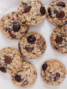 scout cookies — gracefulleats Guittard Chocolate, Chocolate Wafers, Dark Chocolate Chips, Joy The Baker, Types Of Chocolate, Toasted Pecans, No Bake Cookies, Cookie Dough, Baking