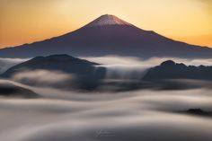 東京カメラ部 Editor's Choice:yasutomo_photography