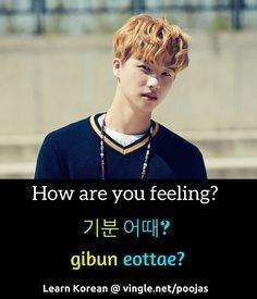 """""""How are you feeling"""" in Korean. Gibun Eottae?"""