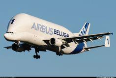 Airbus Transport International F-GSTA Airbus A300B4-608ST Super Transporter
