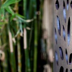 Sanctum design gallery showcases fresh ideas in feature screens & gates Fence Screening, Backyard Landscaping, Screens, Gate, Landscape, Gallery, Design, Woodworking, Canvases