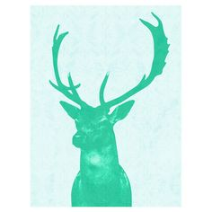 Add a striking focal point above your master bed or mantelpiece with this cotton canvas wall art, featuring a stag head print in a vibrant hue. Team with whi. Stag Head, Cotton Canvas, Wrapped Canvas, Canvas Wall Art, Moose Art, Wildlife, Vibrant, Green, Artist