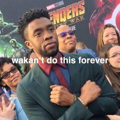 hahahahaha wakant do this forever Avengers Humor, Avengers Cast, Marvel Jokes, Marvel Funny, Memes Humor, Dc Memes, Funny Memes, Marvel Photo, Marvel Actors