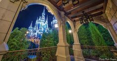 Ten things that happen at Disney overnight... while you sleep... to keep it looking pristine.