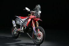 HRC Shows Off the 2014 Honda CRF450 Rally Race Bike