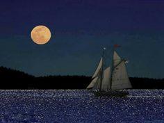 Voilier à la pleine lune.  If it translates to beautiful moonlight night, then I agree!