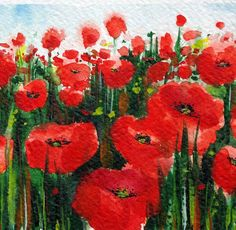 poppies - one of my favorite flowers