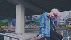 The Rose - BABY MV