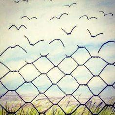 oiseaux#draw