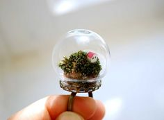 Terrarium ring - miniature terrarium jewelry - globe ring - natural moss with… Unusual Rings, Unusual Jewelry, Moss Terrarium, Terraria, Delicate Rings, Glass Globe, Glass Ball, Real Flowers, Ring Designs