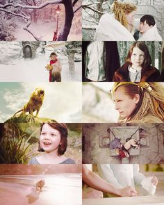 Chronicles of Narnia: The Lion, The Witch and The Wardrobe. Narnia Movies, Narnia 3, Edmund Pevensie, Lucy Pevensie, Chronicles Of Narnia Books, The Valiant, A Series Of Unfortunate Events, Cs Lewis, Fiction Novels