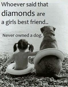 Whoever said that diamonds are a girls best friend... never owned a dog.
