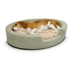 Have to have it. K&H Pet Products Thermo-Snuggly 6 Watt Sleeper - Sage - $76.99 @hayneedle