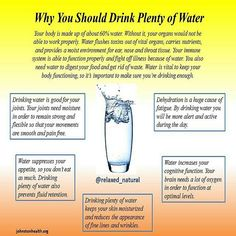 Benefits of drinking water Benefits Of Drinking Water, Health Diet, Diet Tips, Immune System, Health And Beauty, Dieting Tips, Weight Loss Tips, Healthy Diet Tips