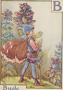 Bugle flower fairy