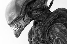 From the Alien archives