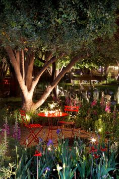 Jardinera Sweet Home, Gardening, Gardens, Small Gardens, Landscaping, Decks, Lights, Cute, Green