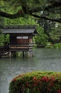 1000 images about jardins japonais animes on pinterest for Jardin japonais zen